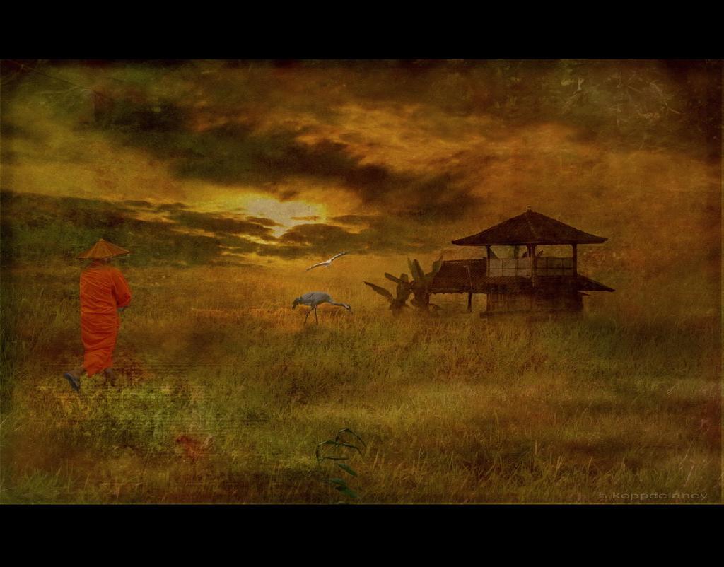 瞑想 wordpress投稿記事「ビパサナウォーキング」イメージ_02